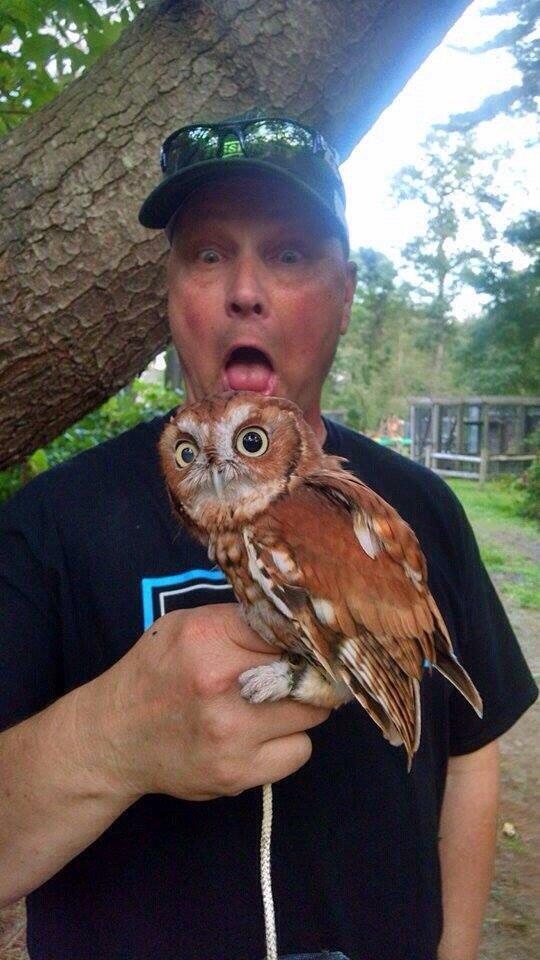 Steve & Owl Selfie